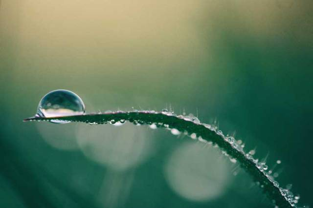 water-drop-web